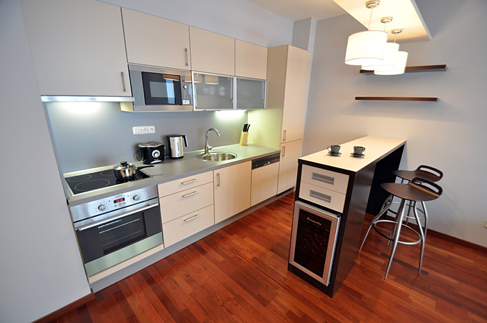 04-rental-apartmetns-prague-kitchen